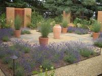 сад-лаванды