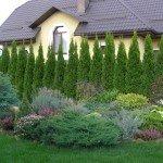 Фото озеленение дачи