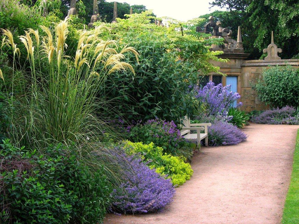 Растения в саду дизайн 5