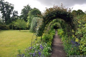 Взрослый сад. Открытое и закрытое пространство