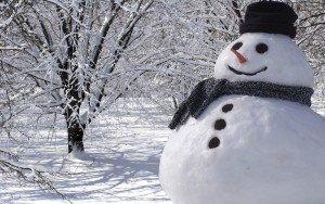 снеговик в саду
