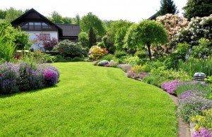 Композиция. дом в саду