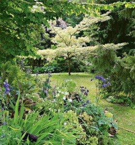 Недостаток пространства в саду