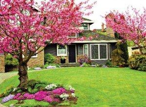 поляна соразмерная дому