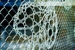 Плетеный забор голландских дизайнеров