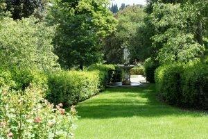 Поляна. Сад Боболи. Италия