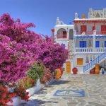 Греция. Сад Средиземноморья.