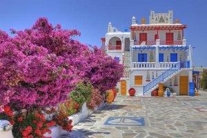 сад на острове .миконос. Греция