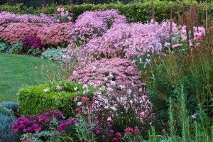 Pink Garden by Clive Nichols