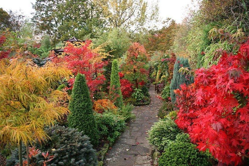 ландшафтный дизайн осенью