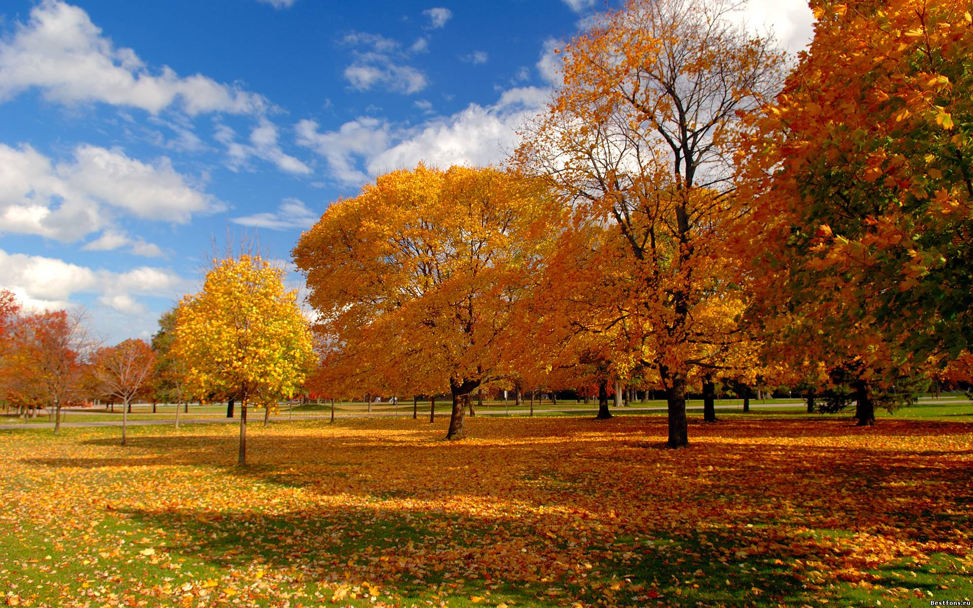 Фото природы осень Вами