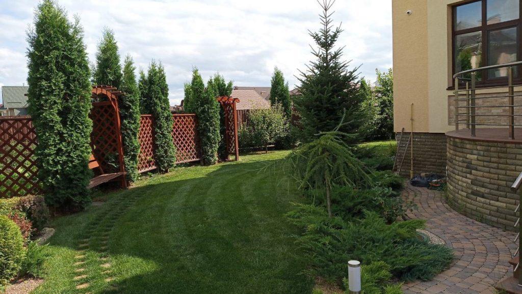 Красивый газон в саду